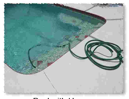 Hose in dirty swimming pool.