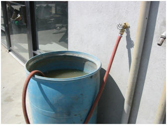 Hose connected from cleat faucet to dirty bucket of water.